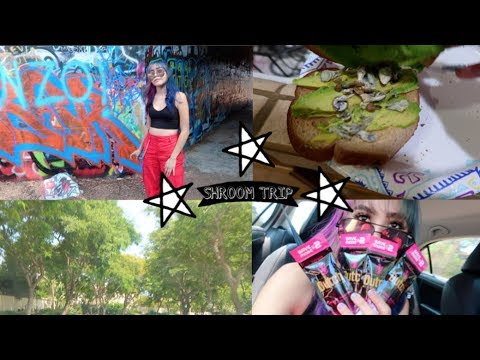 Taking psilocybe cubensis aka MAGIC MUSHROOMS FOR THE FIRST TIME (VLOG) //  LIFEBEINGDEST
