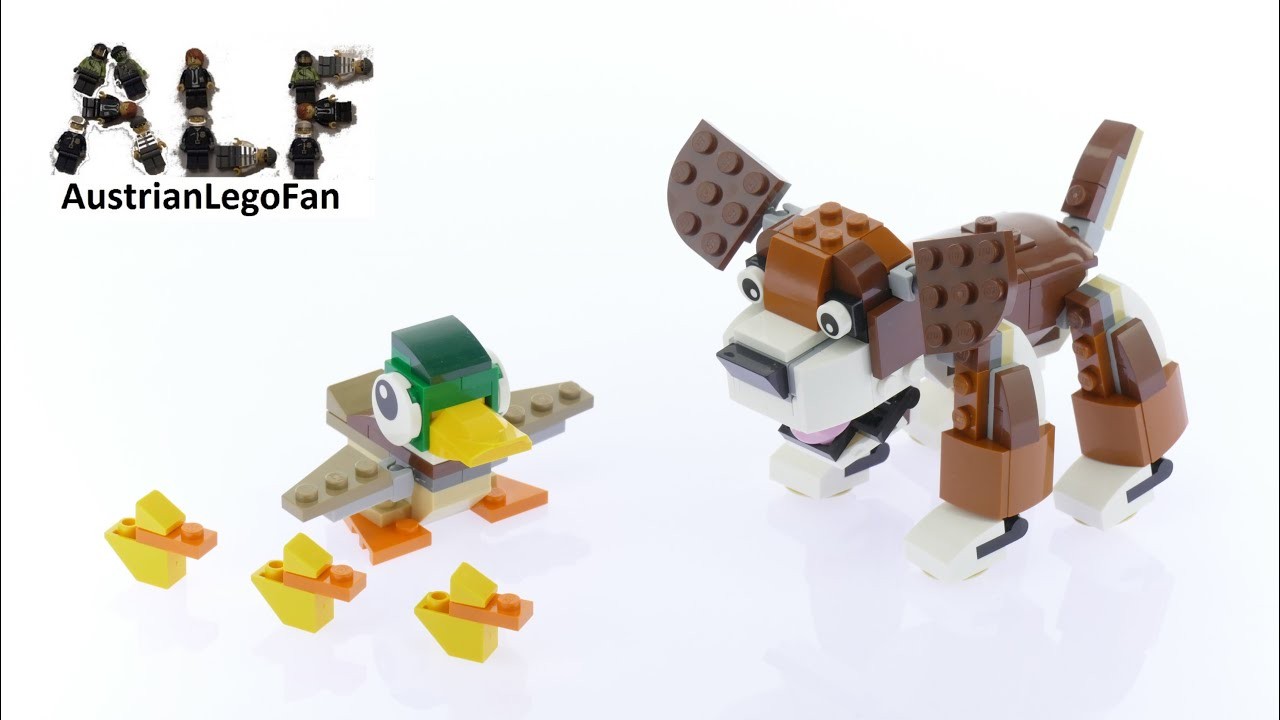Lego Dog Video  Youtube