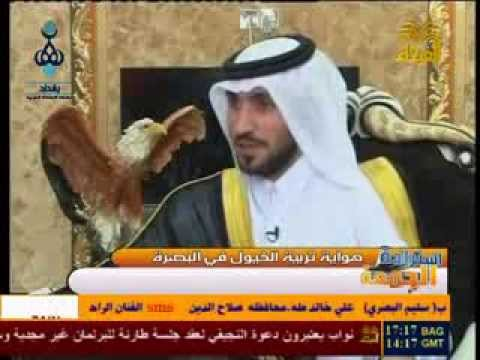 الشيخ ضرغام المالكي وهواية تربية الخيول العربيه الأصيله - الجزء الثاني