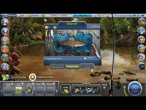 Hoplosternum - Go Fishing Facebook (Fish, Bait, Tips & Trik)