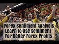 Forex Sentiment - Should We Chase It?