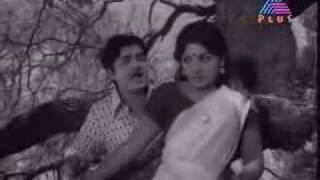 Laksharchana Kandu Madangumbol - Ayalathe Sundari ( 1974 ).flv