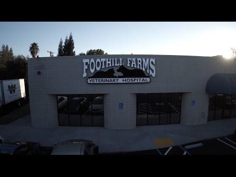 Foothill Farms Veterinary Hospital