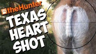 Texas Heart Shot Massacre  - theHunter 2016 PC Gameplay w/leeroy