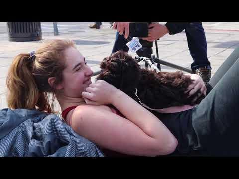 Puppy Meet and Greet at Syracuse University
