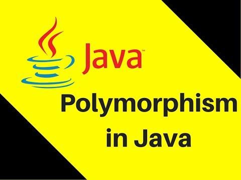 8.7 Polymorphism in Java
