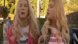 Hold My Poodle -white Chicks