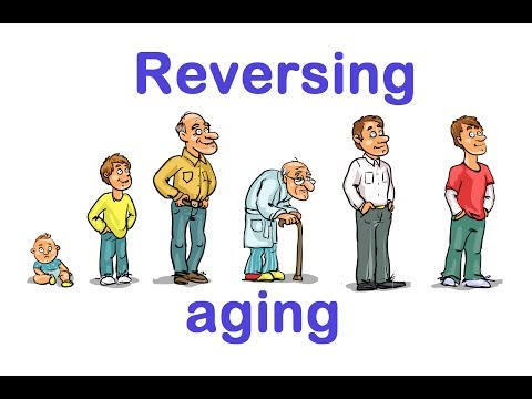 Could Aging Be Reversed?