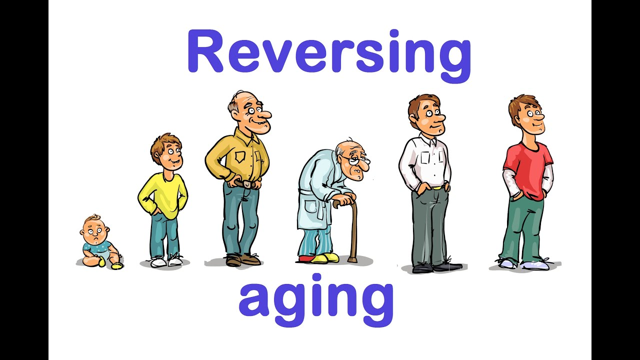 a r aging report