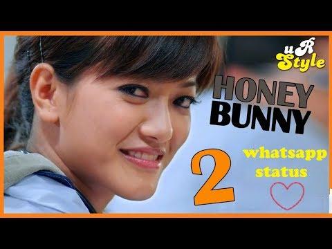 Whatsapp status,Whatsapp video,whatsapp love video ,Honey Bunny 2,HONEY BUNNY SONG