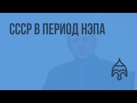 СССР в период НЭПа. Видеоурок по истории России 11 класс