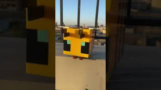 Minecraft Dog SAVES ME In REAL LIFE!! #shorts