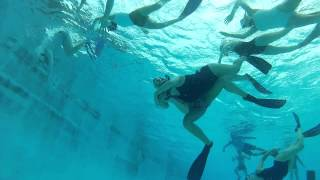 Australian Women's Underwater Rugby (2)