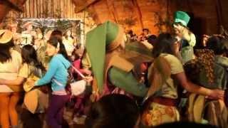 Festival del Bosque en Neltume