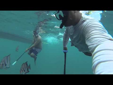 Offshore Fishing Galveston Tx Spearfishing