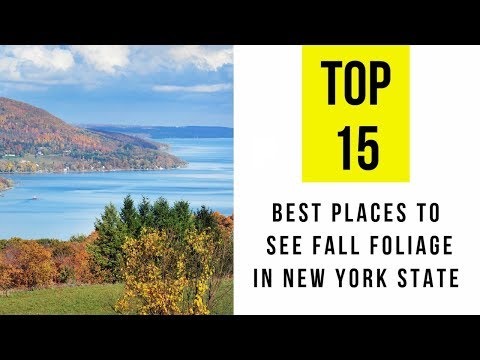 The 15 Best Places to See Fall Foliage in New York State