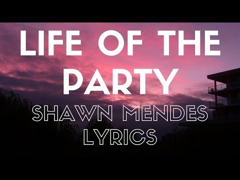 Life Of The Party | Shawn Mendes | Lyrics