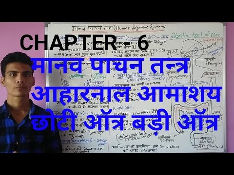 GENERAL SCIENCEपाचन तंत्र HUMAN DIGESTIVE SYSTEM SCIENCE PART-2 FOR UPSC, SSC, ALL STATE LEVEL EXAM