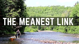 Algonquin Park's Meanest Link - PART 1: The Big East