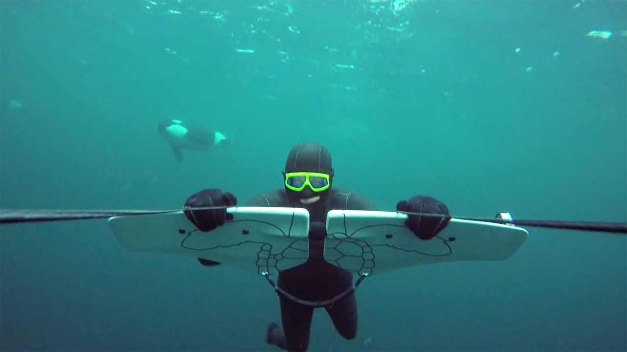 GoPro Awards Soaring with Orcas