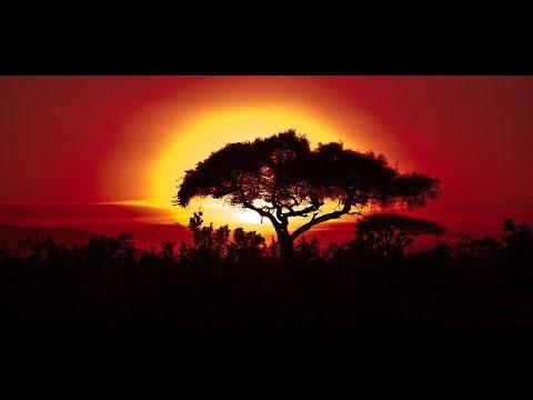 Livingstone, Zambia!