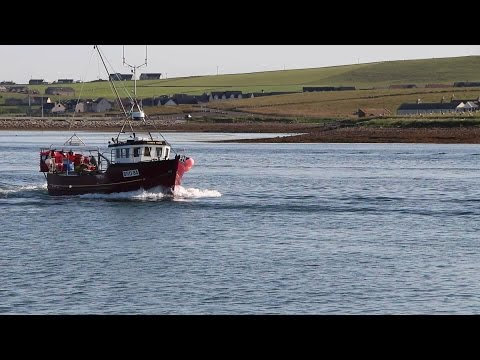 A day of fishing with the Silver Wave on the Scapa flow, Scotland