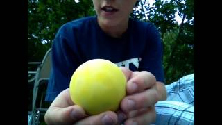 Cure To Greasy Lacrosse Balls