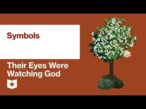 Their Eyes Were Watching God By Zora Neale Hurston | Symbols