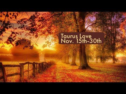 "Taurus Love:  Nov. 15th-30th  ""Somone is making an important decision."