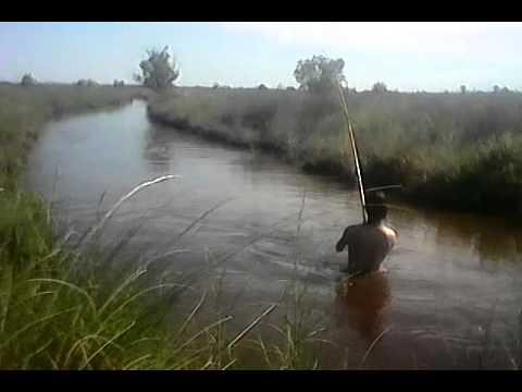 Mike y Rey en una pesca de carpas