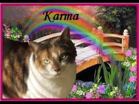 In Memory of Karma