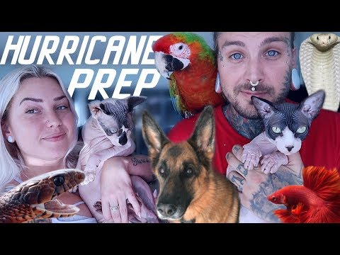 preparing-for-hurricane-dorian-with-all-my-animals!