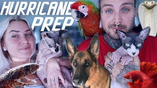 Preparing for Hurricane Dorian with ALL MY ANIMALS!