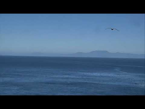 Anacapa Island Cove - Channel Islands National Park Cam 02-17-2018 12:30:18 - 13:30:19