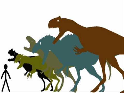 Carnivore Families