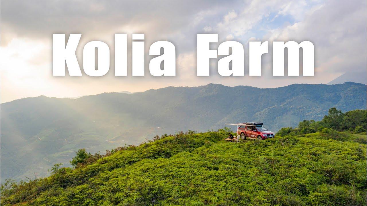 Đi trốn thế giới trên đỉnh đồi bát ngát Kolia Organic Farm, Nguyên Bình, Cao Bằng
