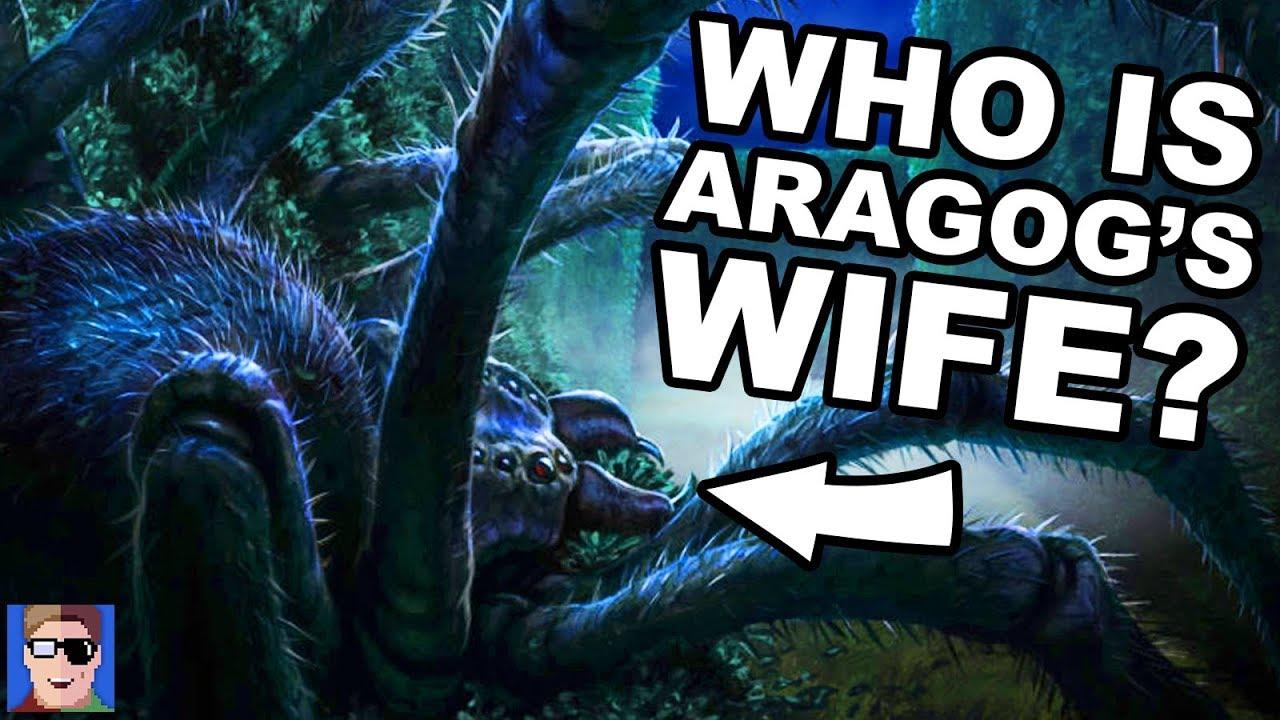 J vs Ben: HARDEST Forbidden Forest Trivia Quiz EVER