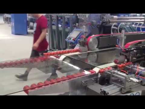 Download Hiseng Glass Machiney - Double Edger Line with Washing Machine