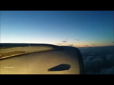 Racing the sunset Air New Zealand Airbus A320 in-flight landing Wellington Airport