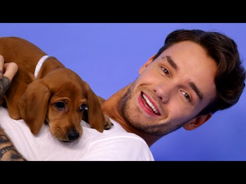 Thumbnail: Liam Payne Plays With Puppies