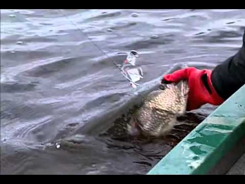 North American Fishing Club: Pike And Muskie Tactics Part 2