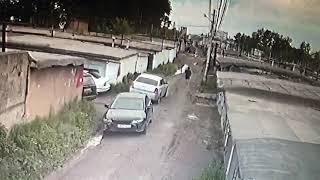 В Ачинске мужчины расстреляли собак