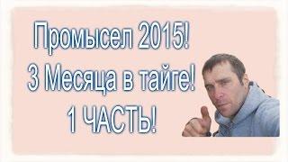 сАША СЧАСТЛИВЫЙ 2016 ГОДА