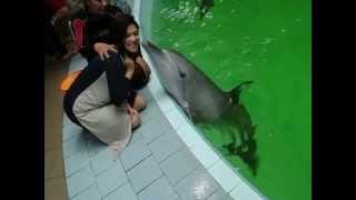 kız öpen balık