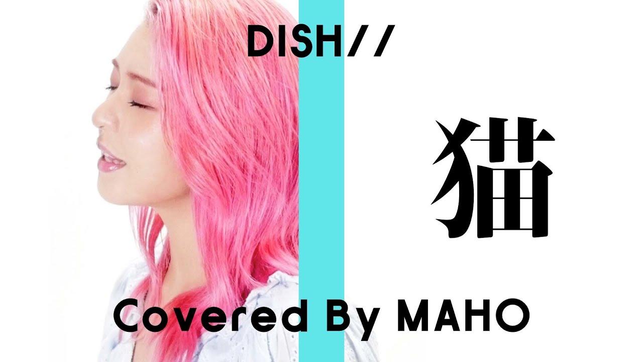 【女性が歌う】猫 - DISH//(Covered By MAHO)【フル歌詞付き】