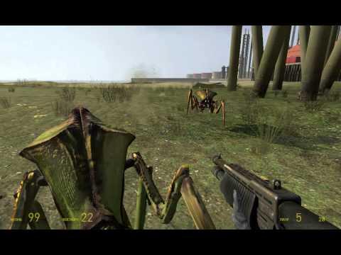 Как Активировать читы в Half-Life 2
