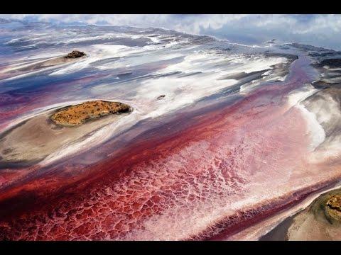Танзания, Озеро Натрон, Красота смерти, 2016, Tanzania, Lake Natron, Beauty death
