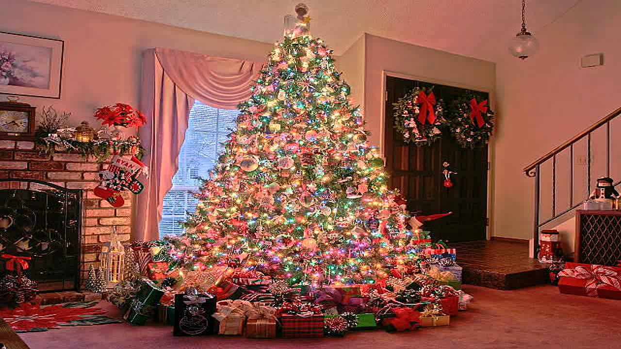 Real christmas trees with presents - Girls Opening Presents On Christmas Day Happy New Years Reality Video