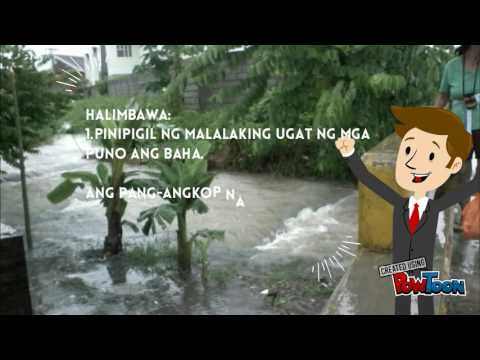 Kyle Pang Angkop