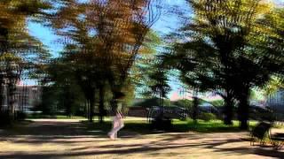 OJL | TSUNAMI[OSR] vs PatriX | 1/2 SEMIFINAL [HD] | WINNER